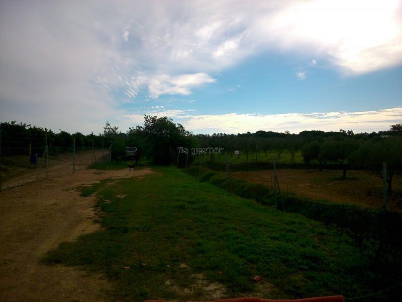 Finca Salida a San Silvestre Villablanca HUELVA FLS Gestión