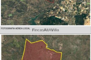 FINCAS ALTAVILLA SL Finca CAMPO